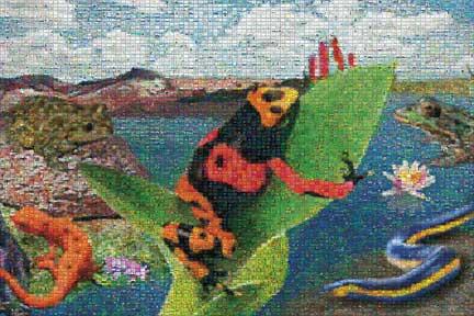 Amphibians Mural